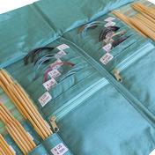 DPN and Circular Needle Case