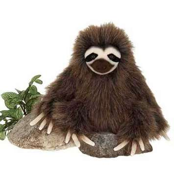 "Fiesta Stuffed Three-Toed Sloth 9.5"" picture"