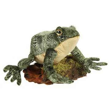 "Fiesta Stuffed Bull Frog 8.5"" picture"