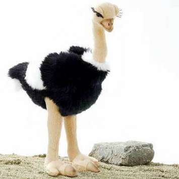 "Fiesta Stuffed Ostrich 12.5"" picture"