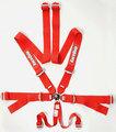 FIA(2020)/SFI CAMLOCK 6PT HARNESS RED