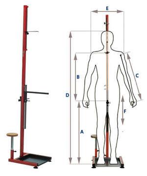 BiciSupport Bio Size System (Art 160) picture