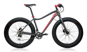 ABARTH Extreme Fat Bike picture