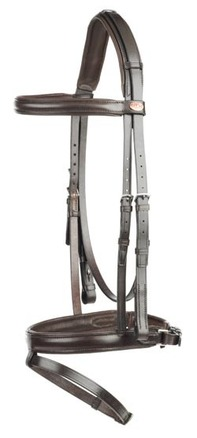 IR Headstall and Flash Noseband picture