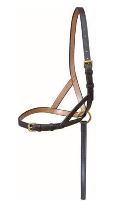 Standard Foal Slip picture