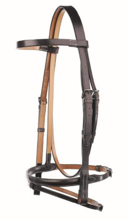 Headstall with Flash noseband picture