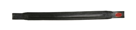 IR Padded Browband picture