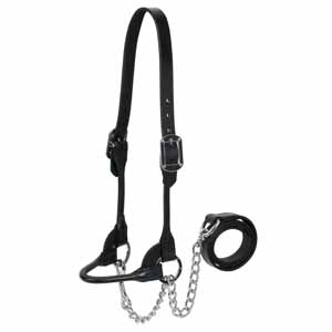 4-H Show Halter, Medium, Black picture
