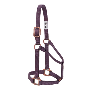Copper Creek Non-Adjustable Halter, 1&quot; Large picture