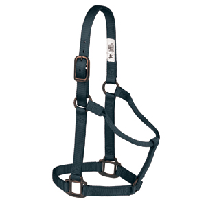 "Sedona Non-Adjustable Halter, 1"" Average Horse or Yearling Draft picture"