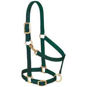 "Basic Adjustable Chin and Throat Snap Halter, 1"" Average Horse or Yearling Draft picture"