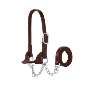 Sheep/Club Calf Halter, Brown picture