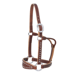 Rock Star Bronc Halter, Average picture