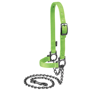 Nylon Adjustable Sheep Halter with Chain Lead picture