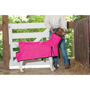Cordura® Goat Blanket, Medium picture