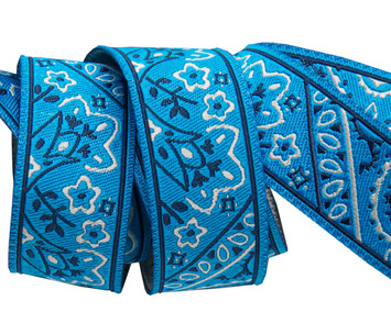 """7/8""""-Bandana on Blue- by Raphael Kerley picture"""