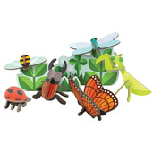 Insect Life Pop-Out