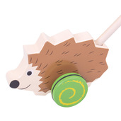 Push Along (Hedgehog)
