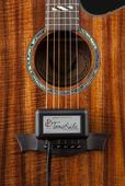 ToneRite® - Guitar