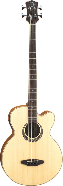 Muse Acoustic/Electric Bass picture