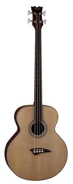 Acoustic/Electric Bass Fretless - GN picture