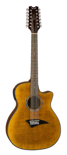 Exotica FM A/E 12 String - FTGE picture