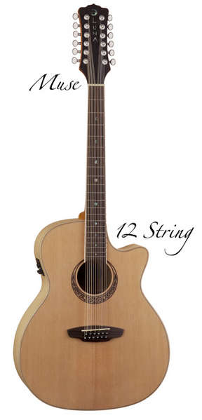 Muse Spruce top 12 string picture