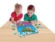 Magnetic Wildlife Map Puzzle: North & South America additional picture 3