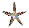 "6"" Starfish- Festive Multi"