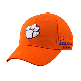 NCAA Performance Caps picture