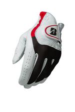 2015 BSG e-Glove