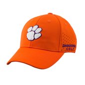 NCAA Performance Caps