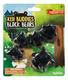 Kiji Buddies Black Bears