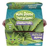 Mini Dome Terrarium : Alicia Aloe