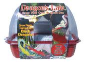 Windowsill Greenhouse: Dragon's Lair