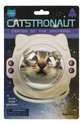 Catstronaut picture