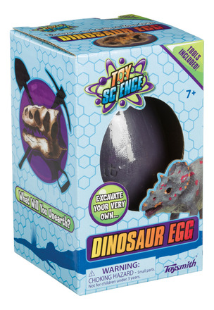 Dinosaur Egg picture