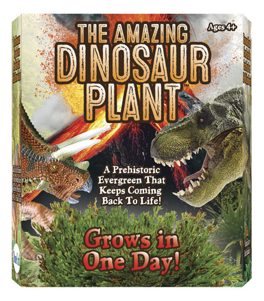 The Amazing Dinosaur Plant picture