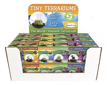 Tiny Terrariums picture