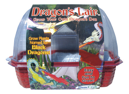 Windowsill Greenhouse: Dragon's Lair picture