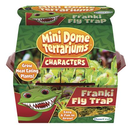 Mini Dome Terrarium Franki Fly Trap picture