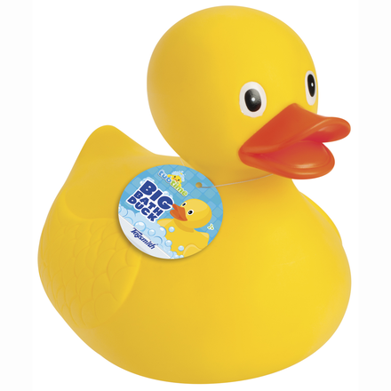 Big Bath Duck picture