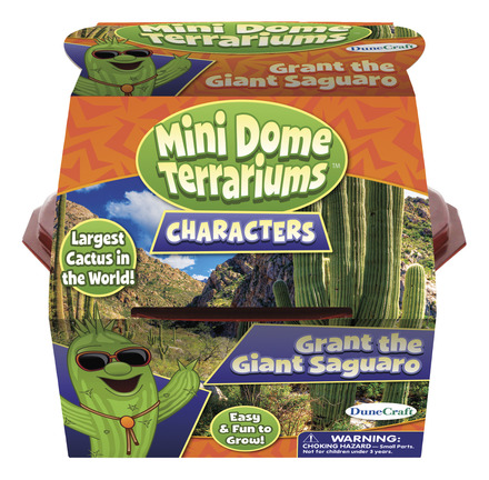 Mini Dome Terrarium: Grant the Giant Saguaro picture