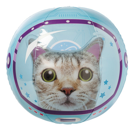 Space Cat Beach Ball picture