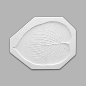 Small Hosta Leaf