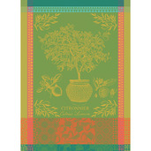 "Citronnier Vert Kitchen Towel 22""x30"", 100% Cotton"