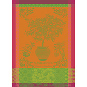 "Mandarinier Pot Orange 22""x30"" Kitchen Towel, 100% Cotton"