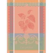 Peches Blush Kitchen Towel, Cotton