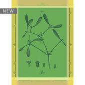 """Gui Botanique Vert Kitchen Towel 22""""x30"""", 100% Cotton"""