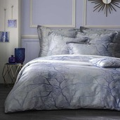 Parade Celeste Pillow Case, Euro, Cotton - 2ea